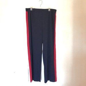 💎 Ambiance Plus Size Track Pants Size 3X